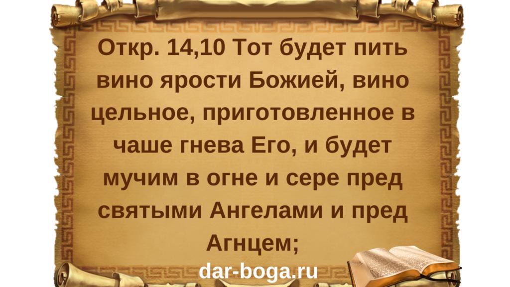 всеобщая чипизация населения России